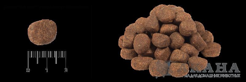 Гранулы в корме для собак Orijen Puppy Large
