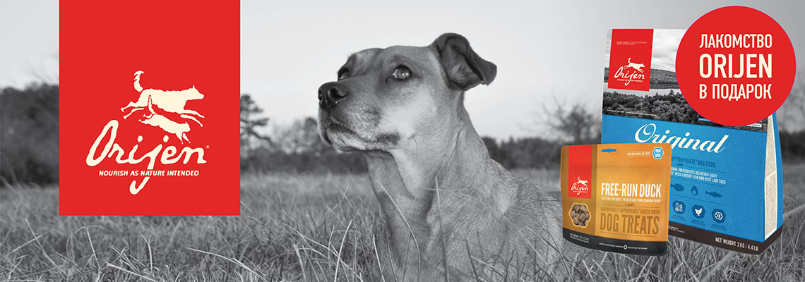 Акционные корма Orijen для собак