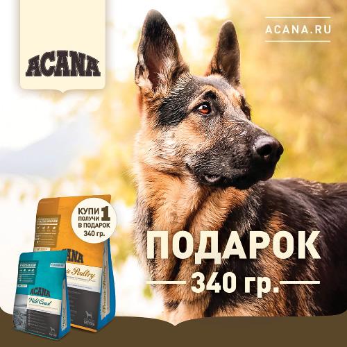 Акция на корм для собак Акана