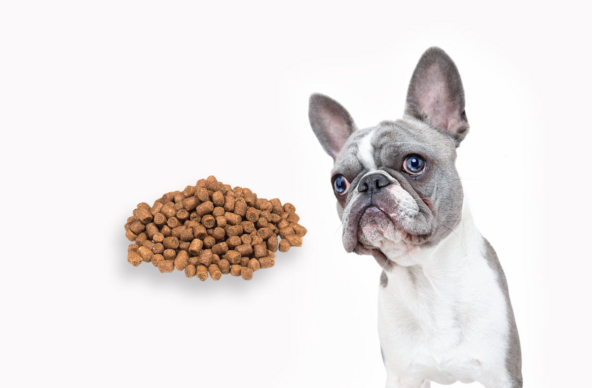 50 грамм сухого корма — это сколько