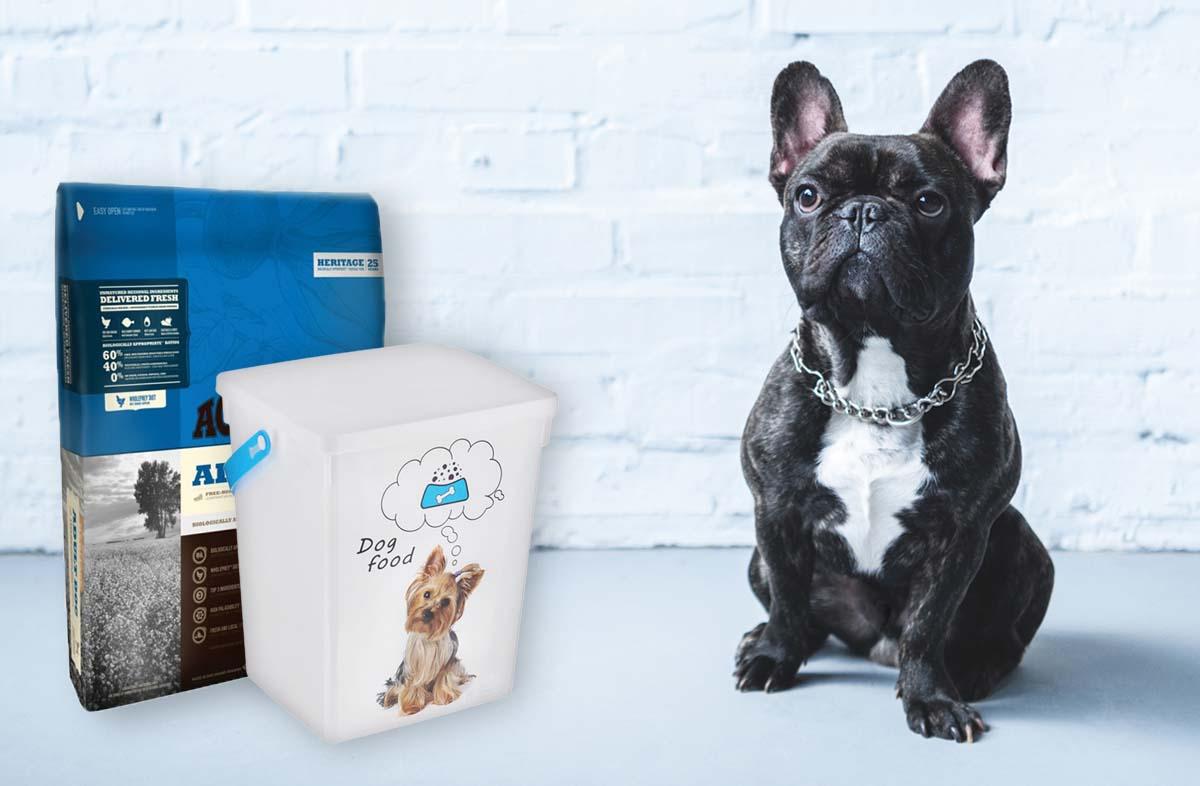 Как выбрать контейнер для сухого корма для собак
