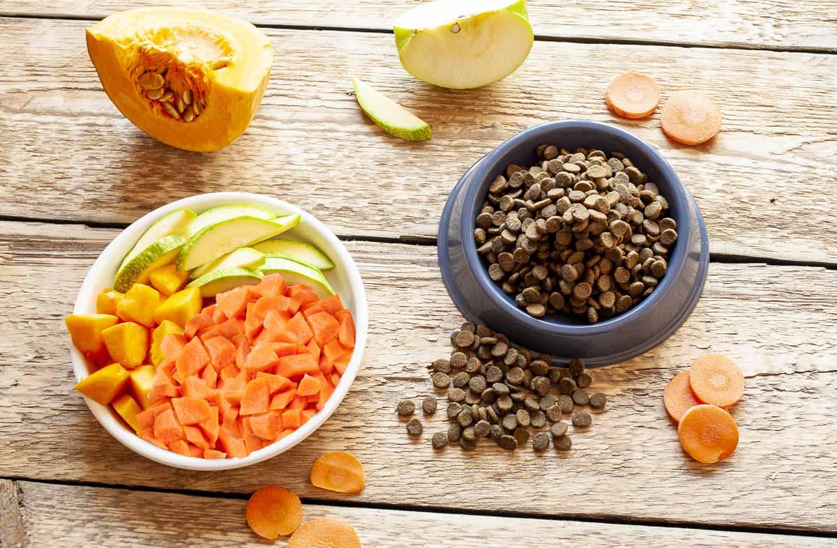 Совместимы ли овощи и сухой корм