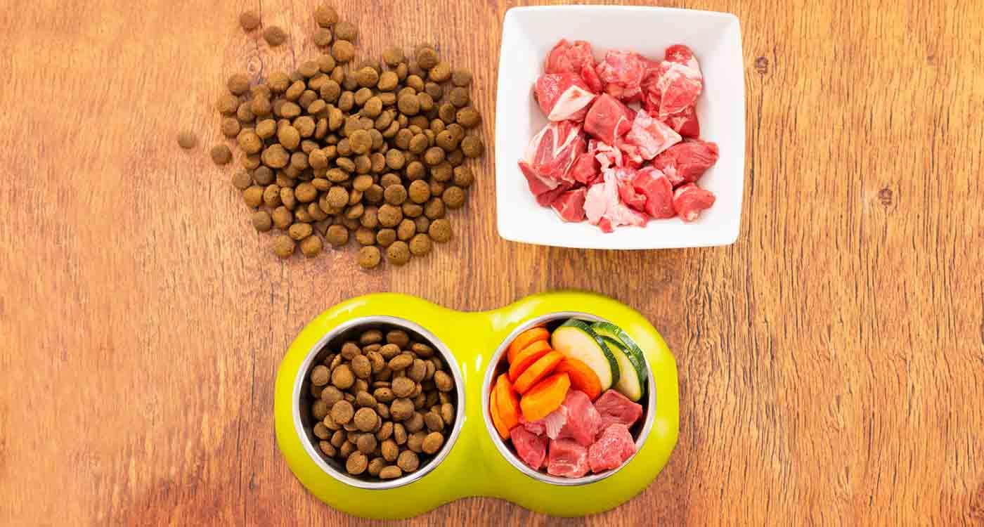 Почему нельзя смешивать сухой корм и натуральный