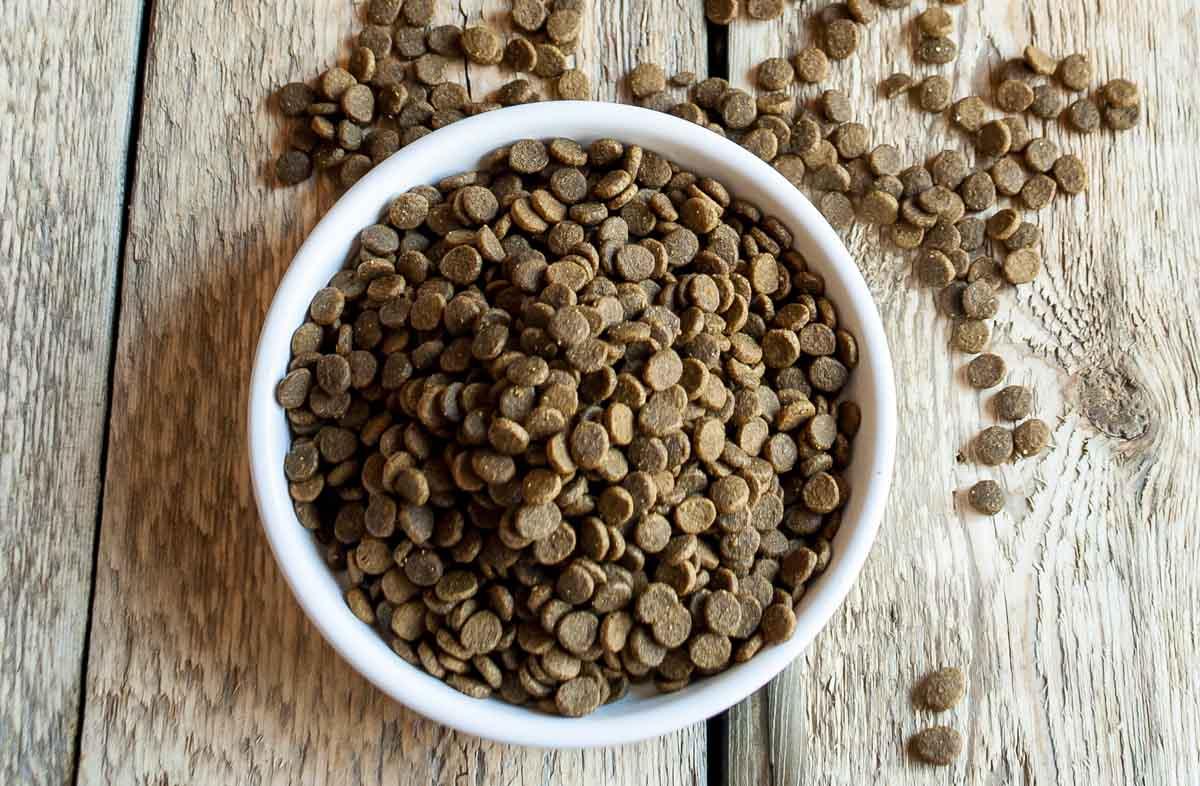 Полезный сухой корм для кошек