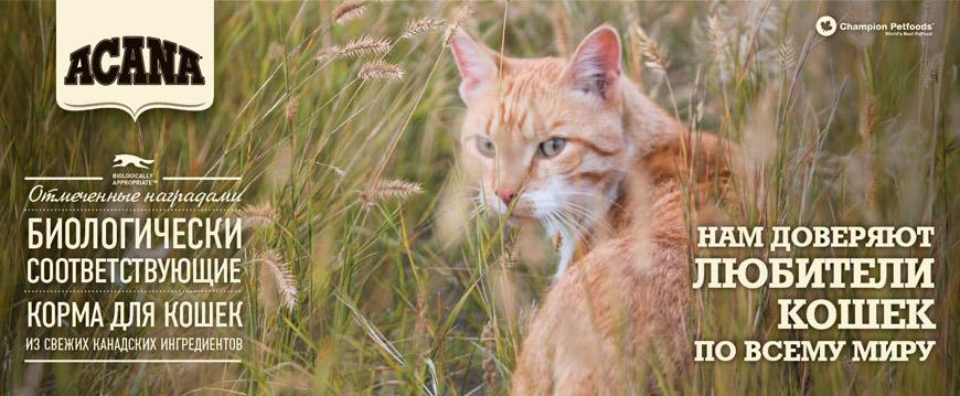 Корма для кошек Acana Regionals