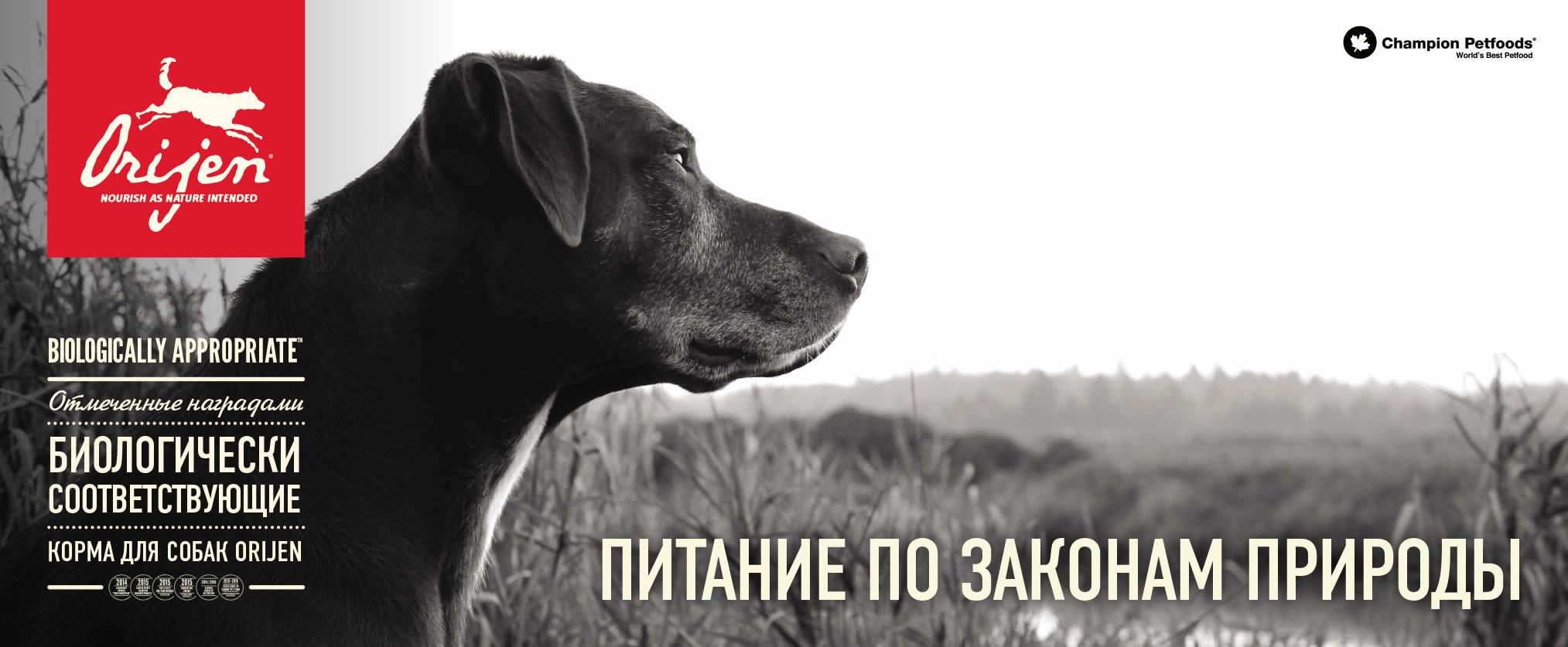 Корма для собак Orijen