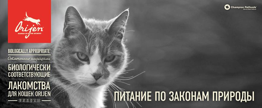 Лакомства для кошек Orijen