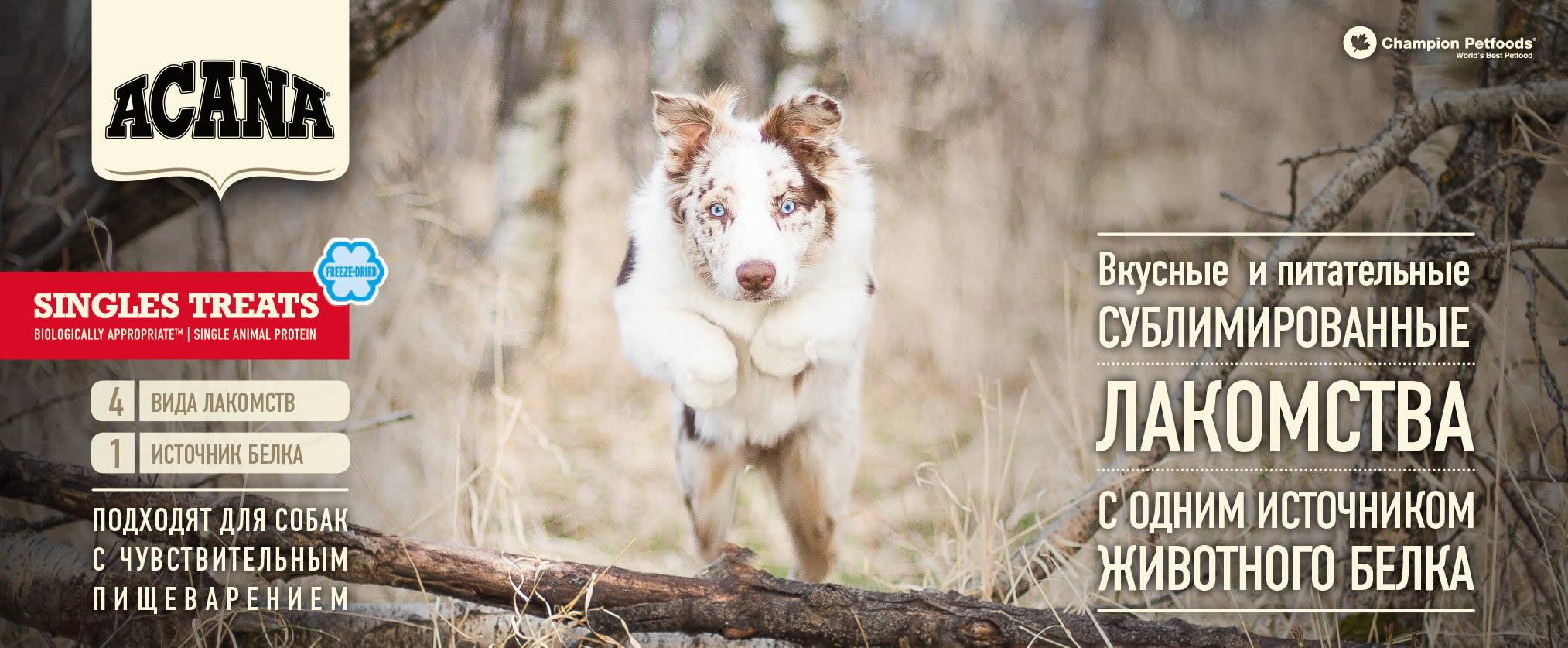 Лакомства для собак Acana