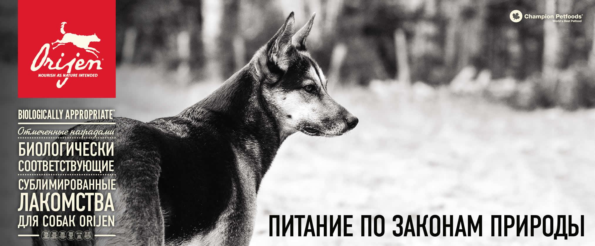 Лакомства для собак Orijen