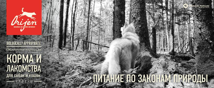 Orijen — официальный сайт в России