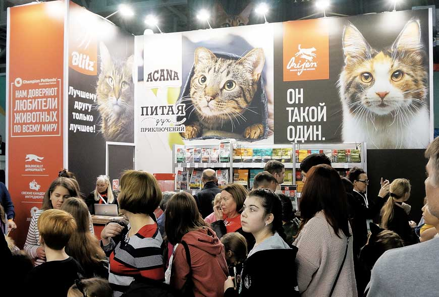 Компания АКАНА на выставке Winter Cat Show 2019