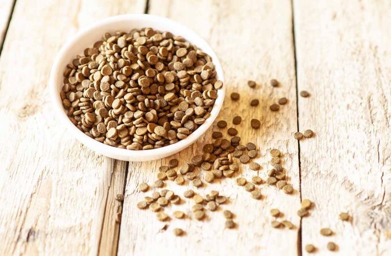 Содержание белка в сухом корме для собак