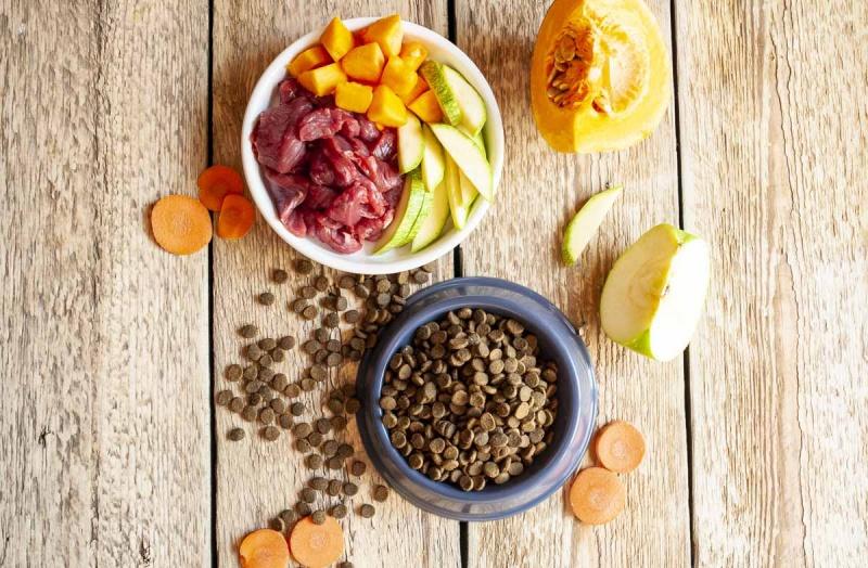 Сухой корм или натуральное питание