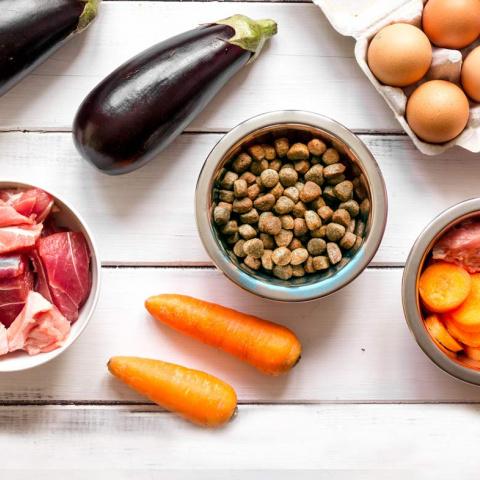 Можно ли чередовать сухой корм и натуральный
