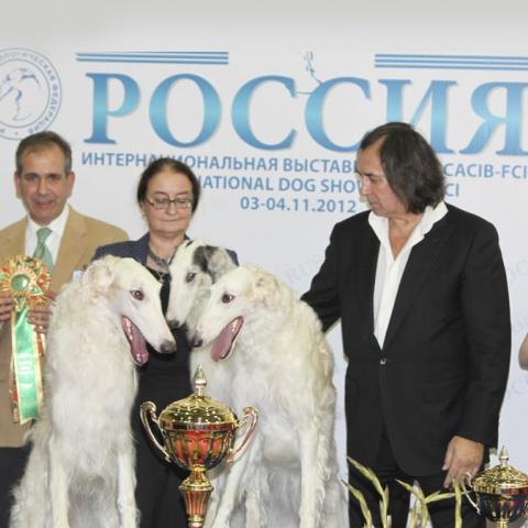 Интернациональная выставка собак 2012
